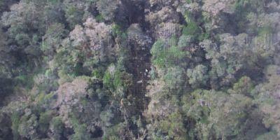 Niciun supravietuitor in cazul prabusirii avionului in Papua Noua Guinee. Autoritatile au inceput recuperarea cadavrelor