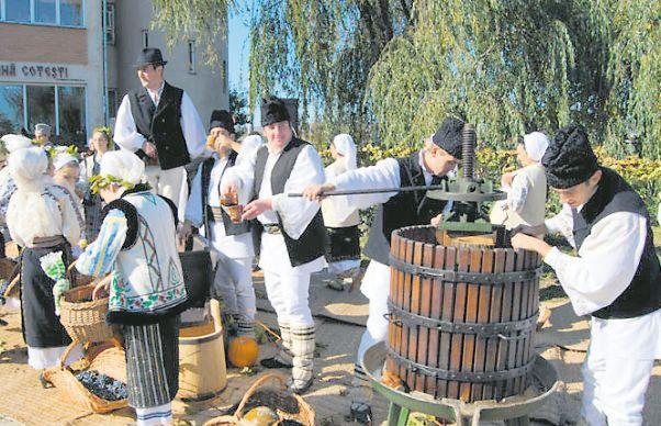 Patria vinurilor si a PSD   Romania 4 you