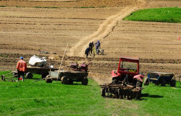 AFIR: Fondurile pentru infrastructura de acces agricola au fost EPUIZATE in SASE MINUTE de la deschiderea sesiunii