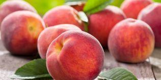 Piersicile si perele intaresc imunitatea. Ce contin aceste fructe pe langa vitamina C