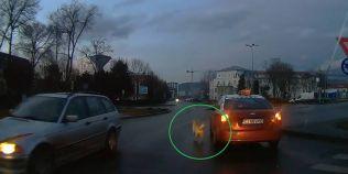 VIDEO Imagini care au devenit virale: un caine, legat de un taxi care merge pe strazile din Cluj-Napoca