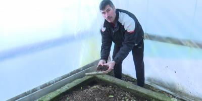 VIDEO Afacerea fermierului care s-a facut