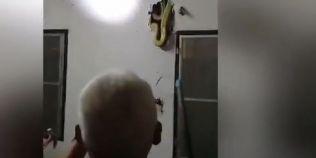 VIDEO Musafirul nepoftit: un barbat a gasit un piton gigant in peretele casei sale