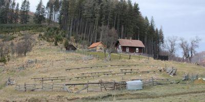VIDEO Satul care a renascut pe muntele sfant al dacilor. In anii 2000, tinutul de poveste nu mai avea niciun locuitor
